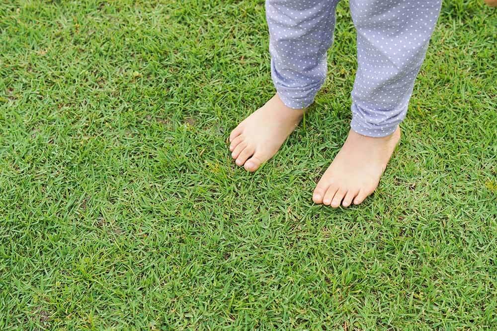 Stopy na trawie